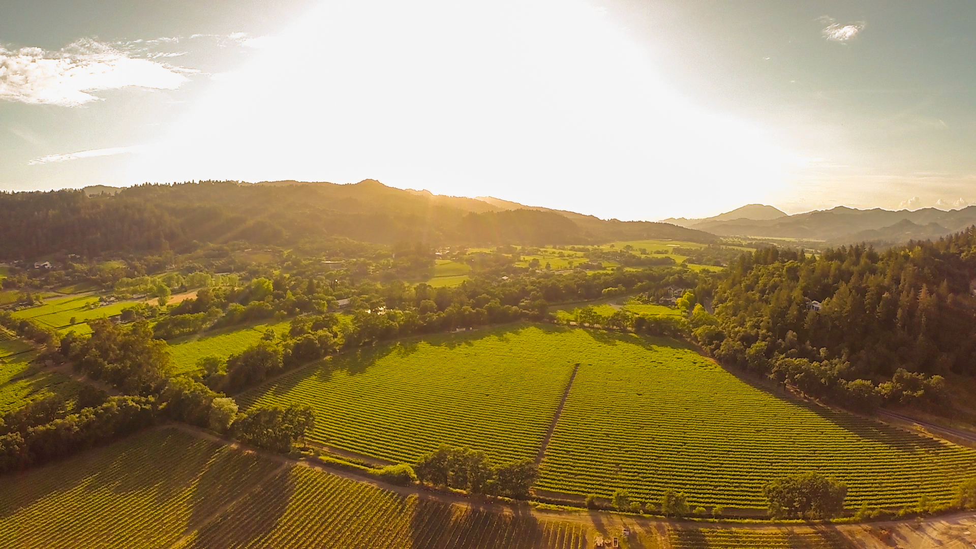 Napa Valley Aerial Photography