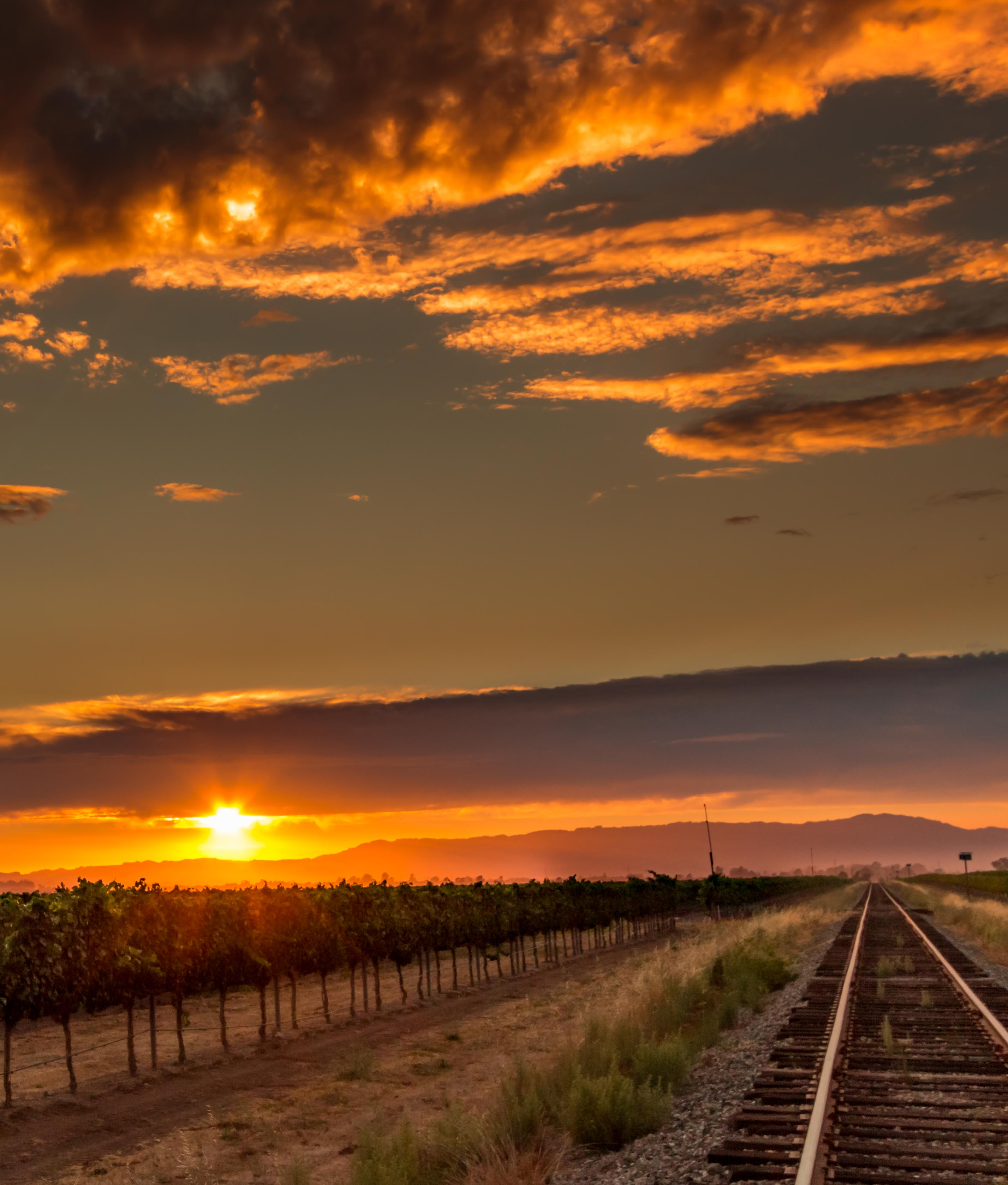 A vibrant sunset over vineyard and train tracks in the Los Carneros wine region of Napa Valley